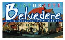 sponsor_logo_belvedere_t